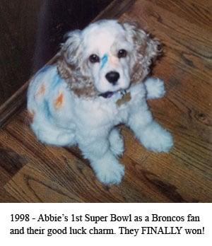 abbie-broncos-puppie