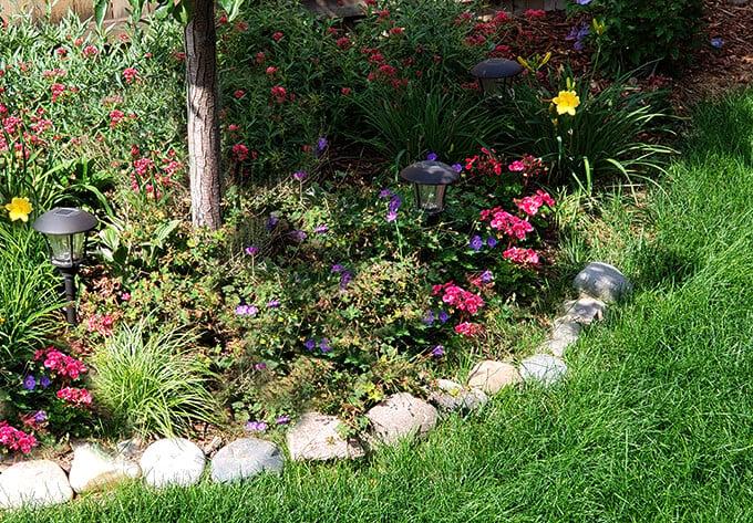 Back Perennial Garden