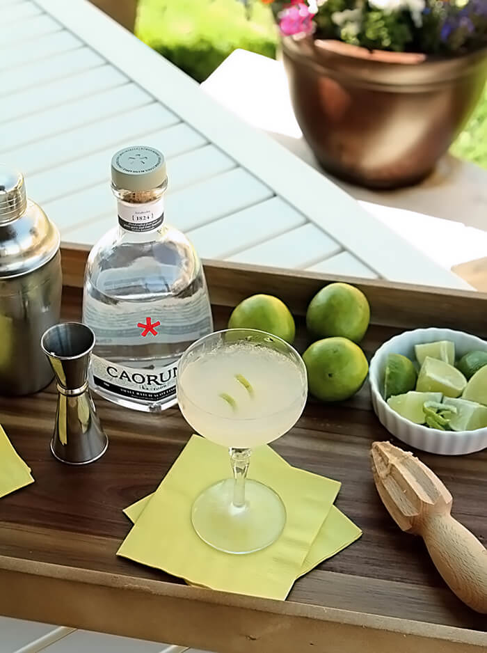 The Gimlet Cocktail on a Tray with Gin and Limes