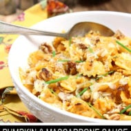 Pasta with Mascarpone Pumpkin Sauce and Toasted Walnuts