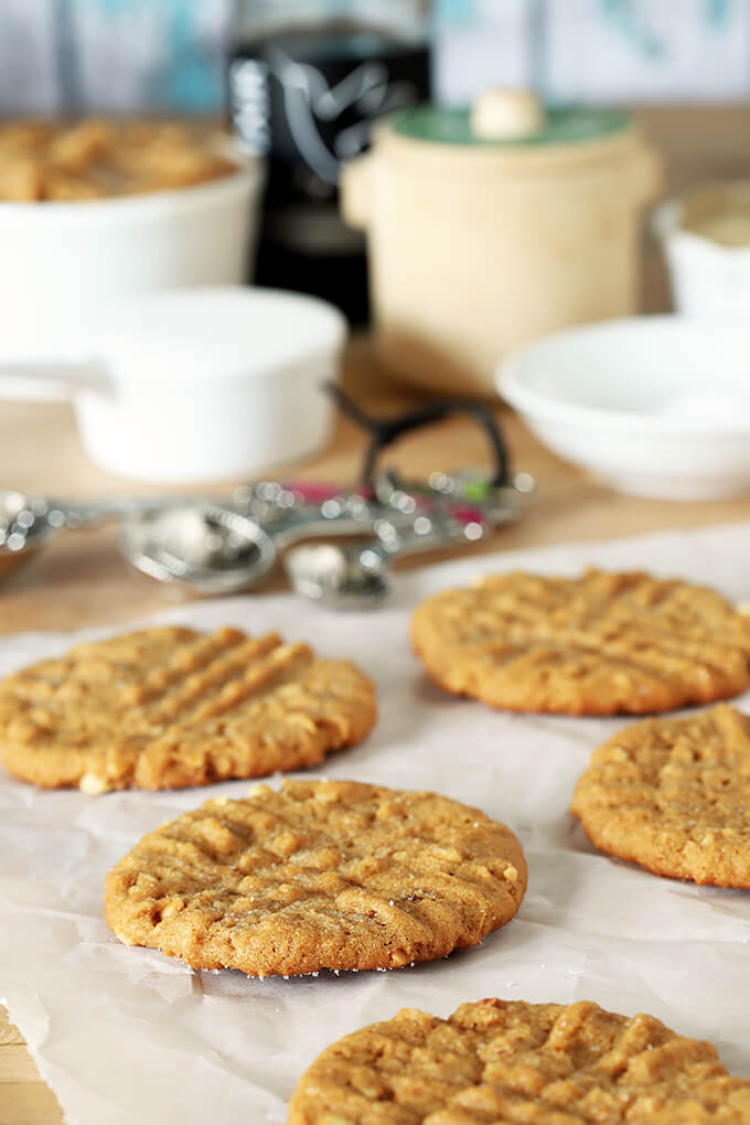 Flourless (Gluten Free) Peanut Butter Cookies Out of the Oven on Parchment Paper